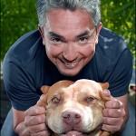 O Encantador de Cães