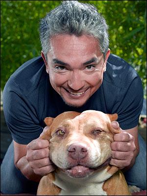 Cesar Millan - O Encantador de Cães