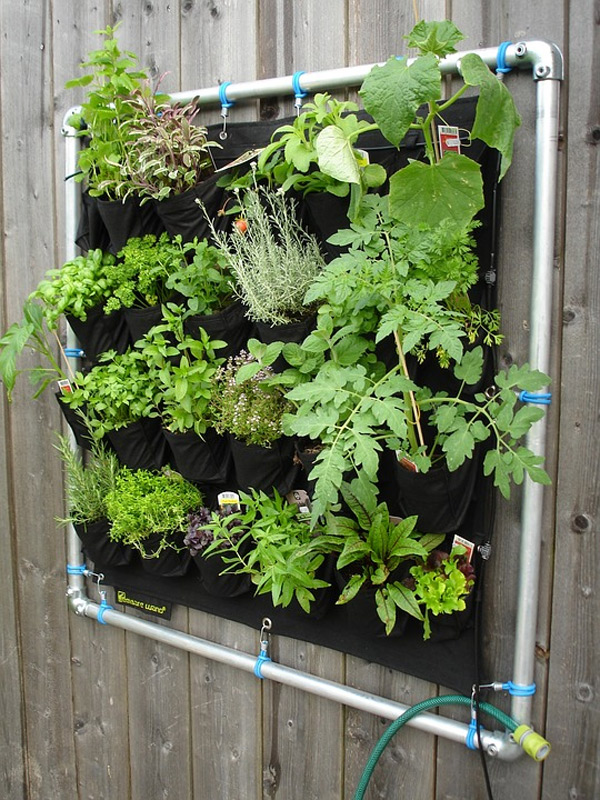 Como decorar o apartamento com plantas - horta vertical