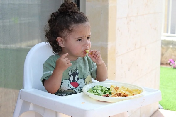 introdução alimentar saudável para os bebês